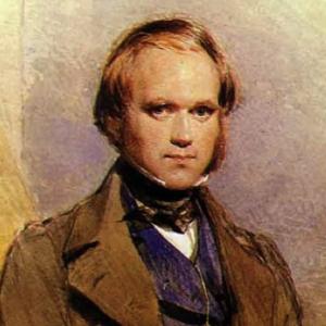 Portrait-Darwin